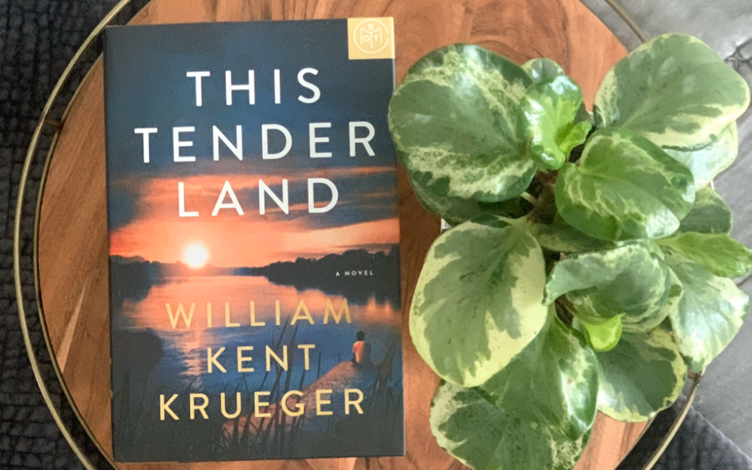 Book Review: This Tender Land